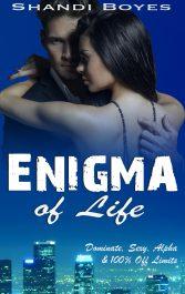 free romance ebooks enigma of life