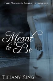 bargain ebooks Meant to Be Young Adult/Teen by Tiffany King