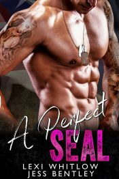 bargain ebooks A Perfect SEAL Military Romance by Lexi Whitlow