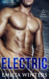 bargain ebooks Electric Romance by Emilia Winters