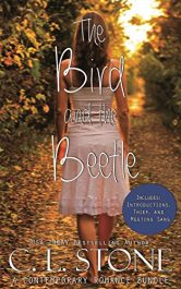 bargain ebooks The Bird and the Beetle Young Adult/Teen Mystery by C. L. Stone