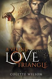 bargain ebooks A Viking Love Triangle Historical Romance by Colette Wilson