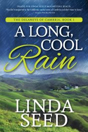 amazon bargain ebooks A Long Cool Rain Contemporary Romance by Linda Seed
