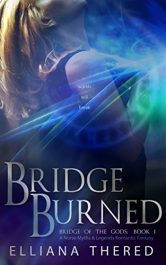 amazon bargain ebooks Bridge Burned Historical Fiction by Elliana Thered