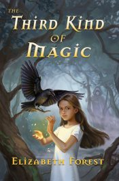 amazon bargain ebooks The Third Kind of Magic YA Fantasy by Elizabeth Forest
