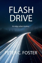 bargain ebooks Flash Drive Mystery by Peter C. Foster