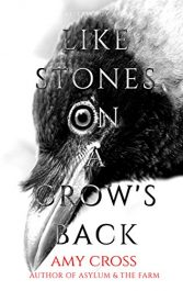 bargain ebooks Like Stone's on a Crow's Back Horror by Amy Cross