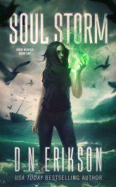 bargain ebooks Soul Storm Urban Fantasy by D.N. Erikson