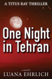 bargain ebooks One Night in Tehran Christian Thriller by Luana Ehrlich