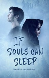 amazon bargain ebooks If Souls Can Sleep Action Adventure by David Michael Williams