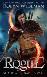 bargain ebooks Rogue Sword and Sorcery Fantasy by Robyn Wideman