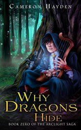 bargain ebooks Why Dragons Hide Fantasy by C. M. Hayden