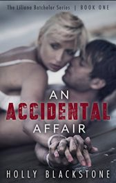 bargain ebooks An Accidental Affair Erotic Romance by Holly Blackstone