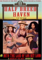 bargain ebooks Half Breed Haven Western Action Adventure by A.M. Van Dorn