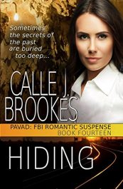 amazon bargain ebooks Hiding Romance Adventure by Calle J. Brookes