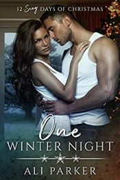 bargain ebooks One Winter Night Contemporary Romance by Ali Parker