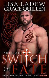 bargain ebooks Switch of Fate Prequel Paranormal Romance by Lisa Ladew
