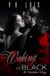 bargain ebooks Waking to Black Erotic Romance by V.H. Luis