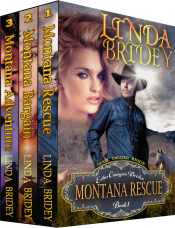 bargain ebooks Echo Canyon Brides 1-3 Western Romance by Linda Bridey