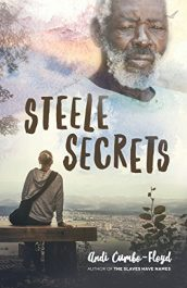 amazon bargain ebooks Steele Secrets YA/Teen Historical Fiction by Andi Cumbo-Floyd