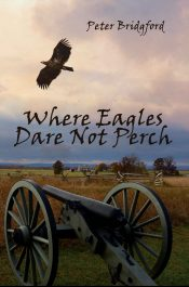 bargain ebooks Where Eagles Dare Not Perch Civil War Historical Fiction by Peter Bridgford