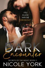 bargain ebooks Dark Encounter Romantic Suspense by Nicole York