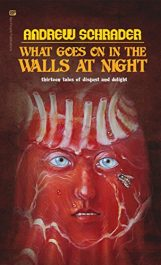 amazon bargain ebooks What Goes On In The Walls At Night Horror by Andrew Schrader