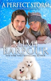 bargain ebooks A Perfect Storm Contemporary Romance by Mimi Barbour