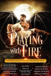 amazon bargain ebooks Playing with Fire Erotic Romance by Multiple Authors