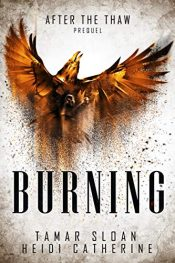 bargain ebooks Burning Young Adult/Teen by Heidi Catherine & Tamar Sloan