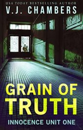 amazon bargain ebooks Grain of Thruth Legal Thriller by V. J. Chambers