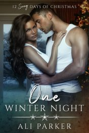 amazon bargain ebooks One Winter Night Contemporary Romance by Ali Parker