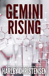 amazon bargain ebooks Gemini Rising Mystery by Harley Christensen