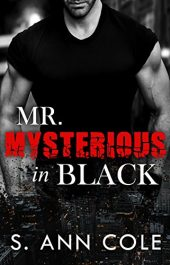 bargain ebooks Mr. Mysterious In Black Erotic Romance by S. Ann Cole