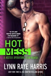 amazon bargain ebooks Hot Mess: Expanded Edition Romantic Suspense by Lynn Raye Harris