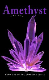 amazon bargain ebooks Amethysst Young Adult/Teen by Heather Bowhay