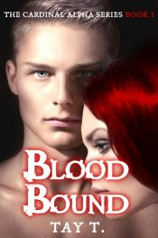 bargain ebooks Blood Bound Paranormal Romance by Tay T.