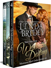 bargain ebooks Montana Mail Order Bride Box Set (Westward Series) Books 4-6 Historical Romance by Linda Bridey