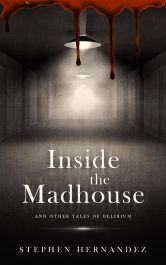 bargain ebooks Inside the Madhouse Fantasy Horror by Stephen Hernandez