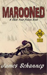 bargain ebooks MAROONED Pirate Action/Adventure by James Schannep