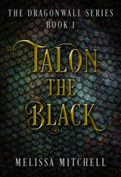 bargain ebooks Talon the Black Young Adult/Teen Fantasy Adventure by Melissa Mitchell