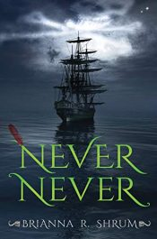 bargain ebooks Never Never Young Adult/Teen Adventure by Brianna Shrum
