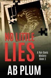 bargain ebooks No Little Lies Mystery Thriller by AB Plum
