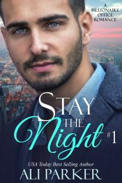 bargain ebooks Stay The Night Book 1 Contemporary Romance by Ali Parker