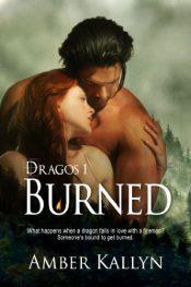 amazon bargain ebooks Burned Erotic Romance by Amber Kallyn