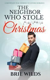 bargain ebooks The Neighbor Who Stole Christmas Romance by Brie Wilds