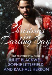bargain ebooks A Darling Bay Christmas: Three Heartwarming Holiday Short Stories Holiday Romance by Rachel Herron