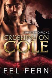 bargain ebooks Crushing on Cole Gay/Paranormal Romance by Fel Fern