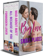 bargain ebooks Big Love in Small Places: A Series Starter Bundle Small Town Romance by Theresa Paolo