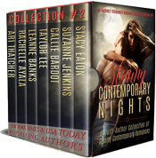 bargain ebooks Steamy Contemporary Nights Erotic Romance by Multiple Authors
